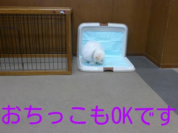 201403200008193b0.jpg