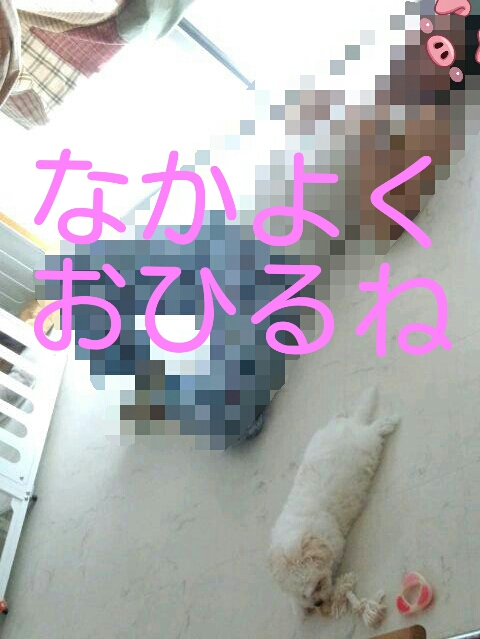 201403200235578da.jpg