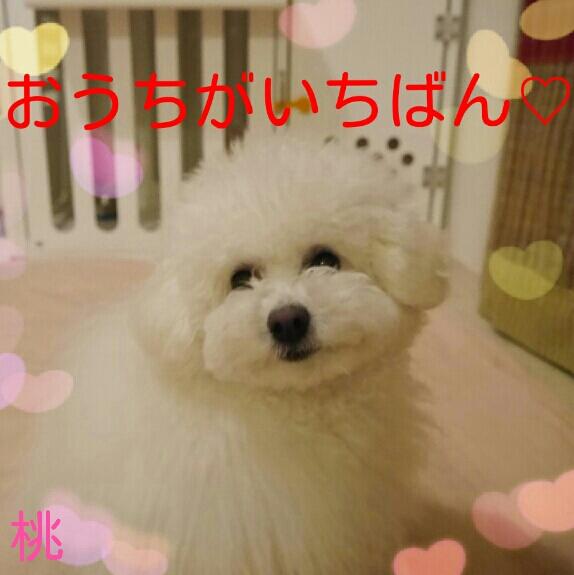201403230248076f0.jpg