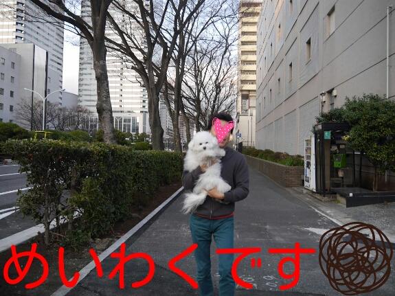 201403252310212bd.jpg