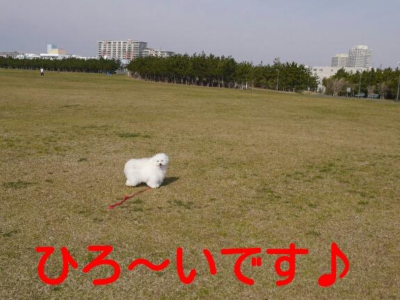 20140330014005ebc.jpg