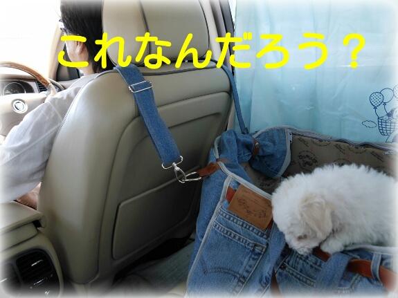 20140515111611640.jpg