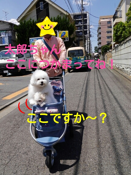 201405201510110de.jpg