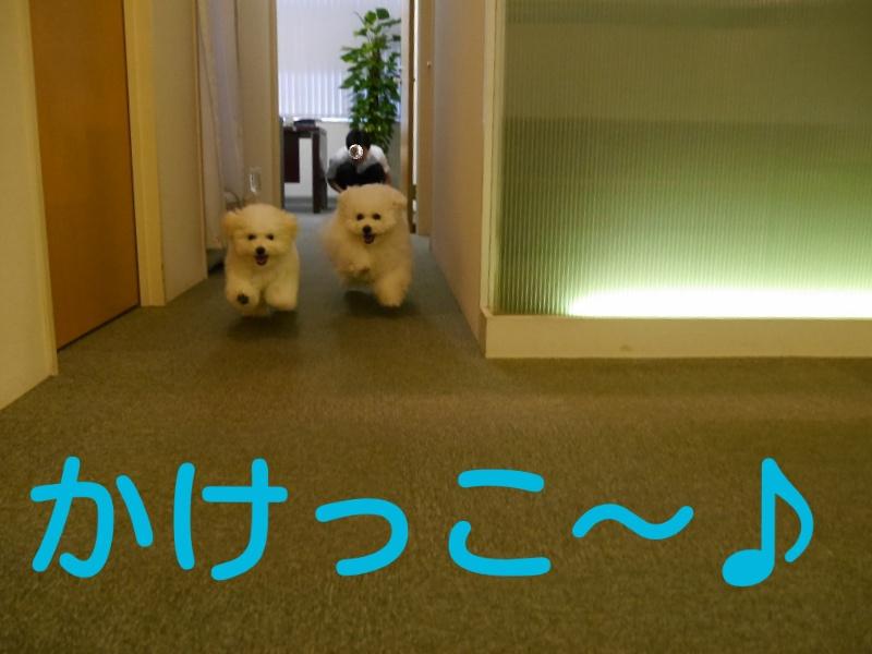 20140707180107456.jpg