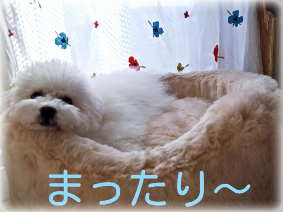 CYMERA_20140222_182937.jpg