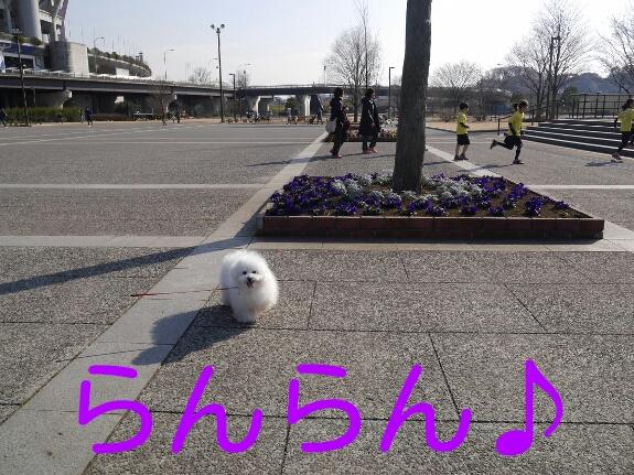 CYMERA_20140228_004743.jpg