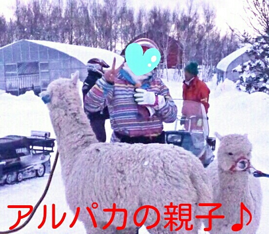 IMG_20140221_011311.jpg