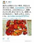 news198447_pho01.jpg