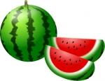 watermelon01-001.jpg
