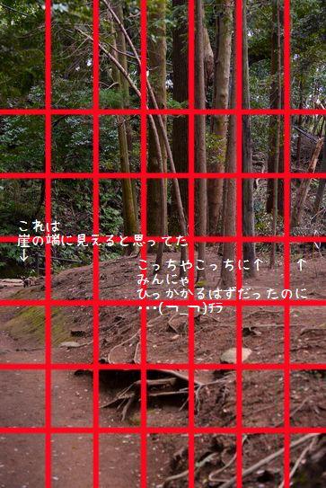 140329_0830a.jpg