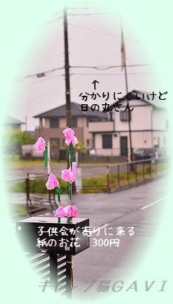 140430_2135.jpg