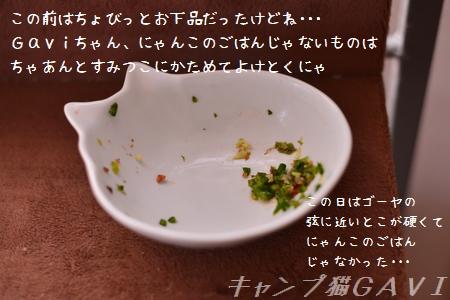 140730_5071.jpg