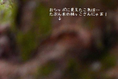 140803_5239a.jpg