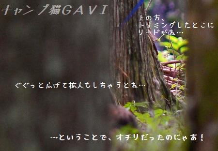 140803_5239a32.jpg