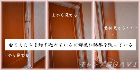 140818_5810.jpg