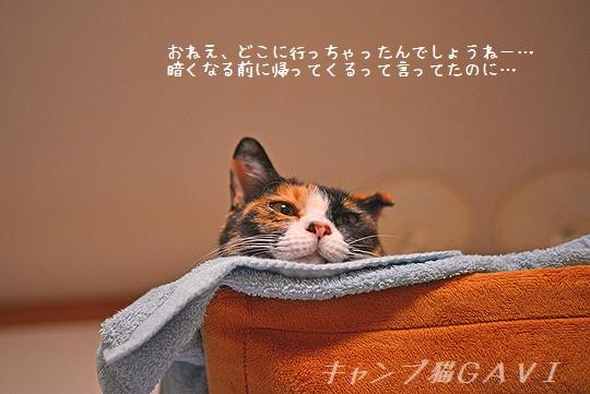 140822_5949a.jpg