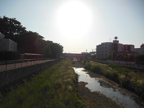 空堀川6月B
