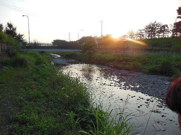 夕焼け空堀川