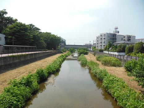 7月31日空堀川