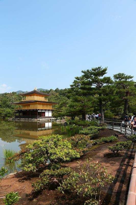 初夏の金閣寺