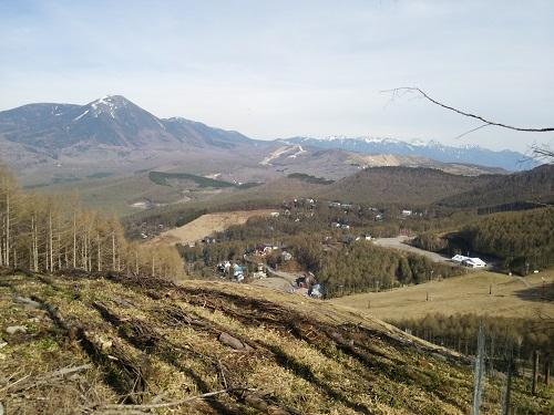ハイキングコースからの景色