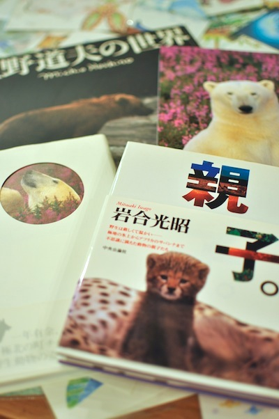 動物ブック2