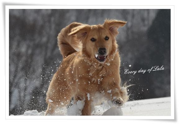 雪遊び楽しいよね!201403