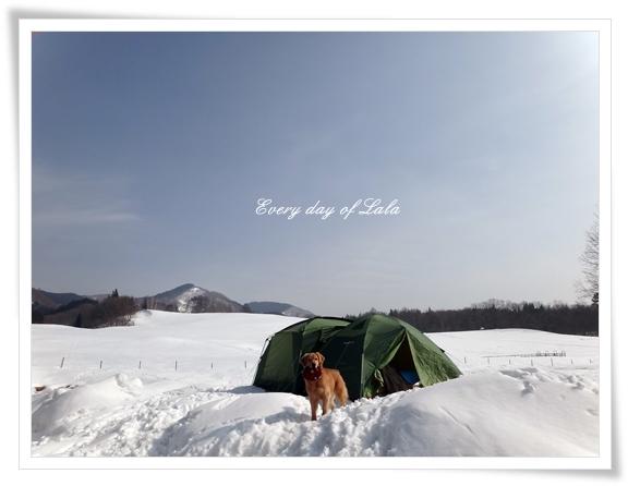 雪上キャンプ201403