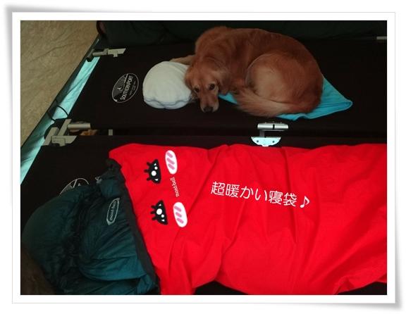 暖かい寝袋201403