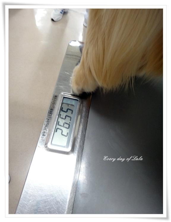 体重201407