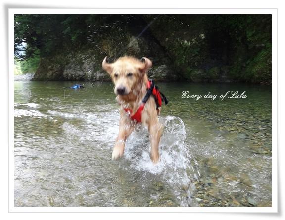 水中ジャンプ201407