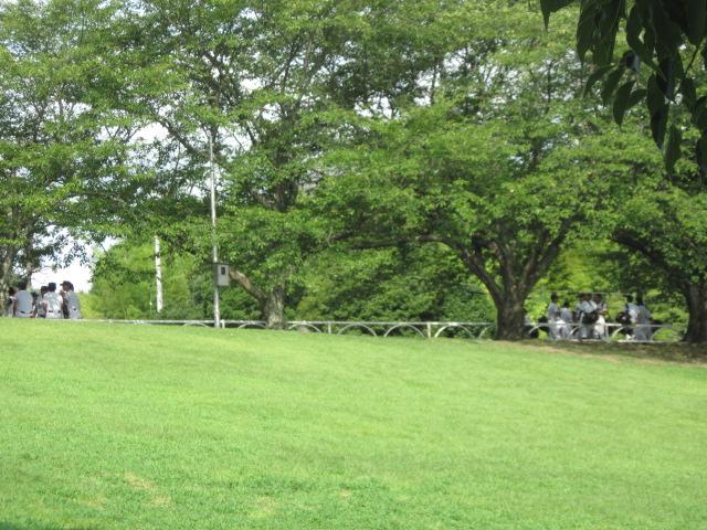 yakiyuu01