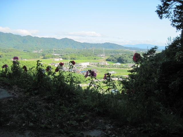 matuonoya02
