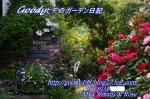 2 IMG_3127 (900x595)