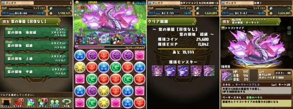 紫の華龍【回復なし】 紫の僻地 超級