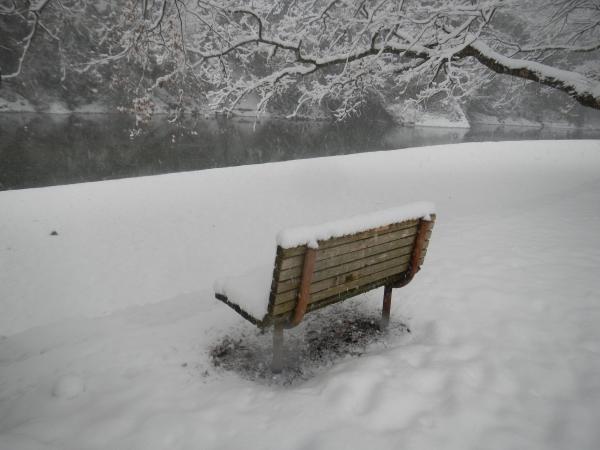 平成26年大雪 116
