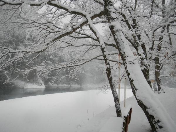 平成26年大雪 118
