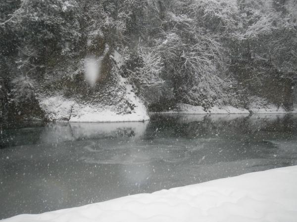 平成26年大雪 121