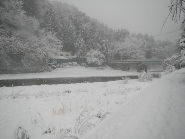 平成26年大雪 124