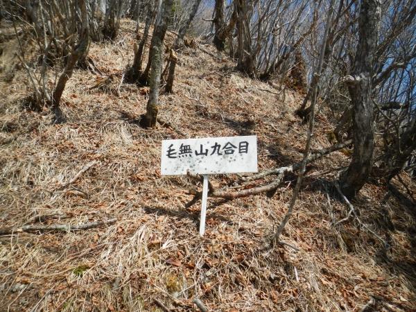 毛無山 036
