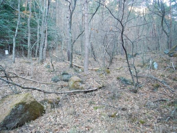 茅ヶ岳 015