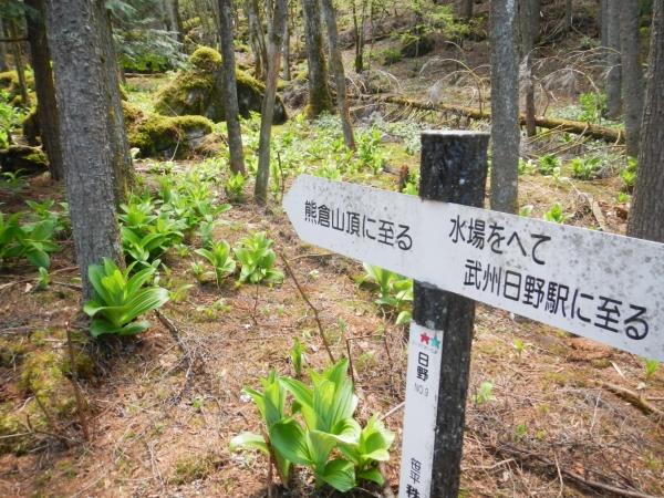 熊倉山025