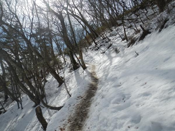 雲取山 021