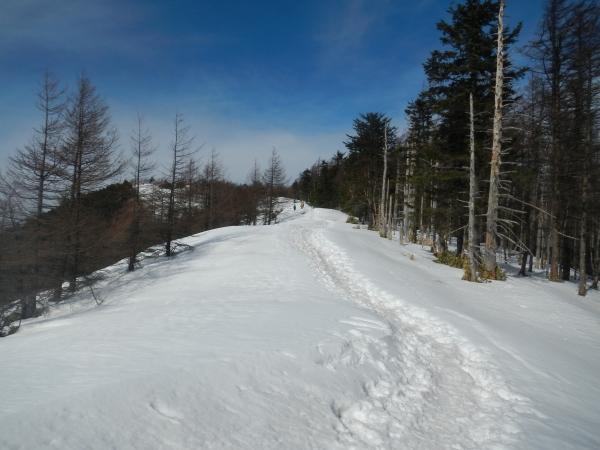 雲取山 058