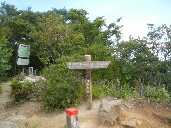 塔ノ岳 045
