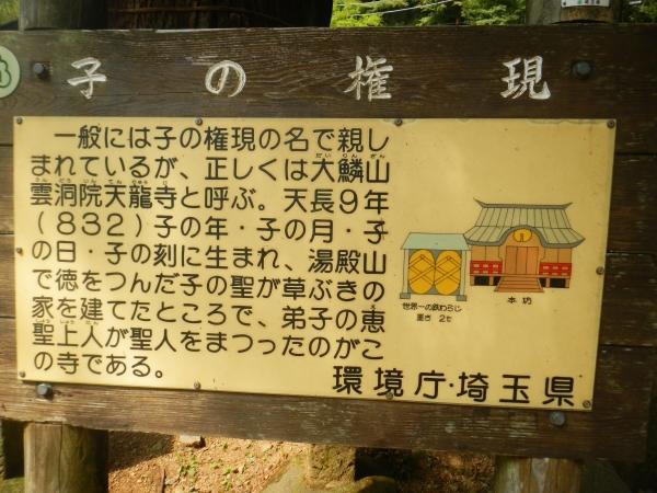 伊豆ヶ岳、子ノ権現 095
