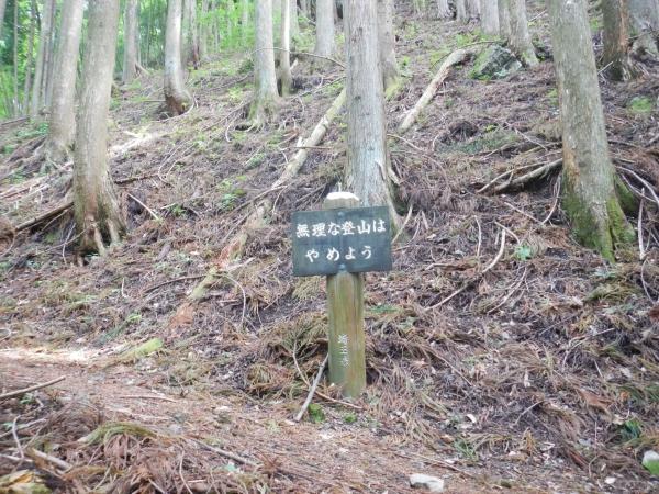 両神山 018