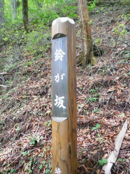 両神山 069