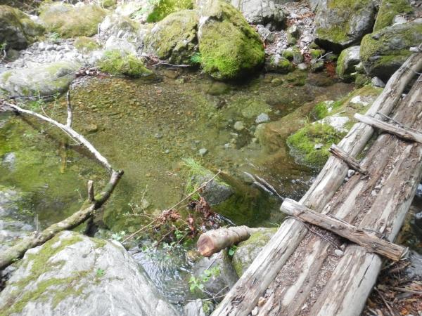 両神山 022