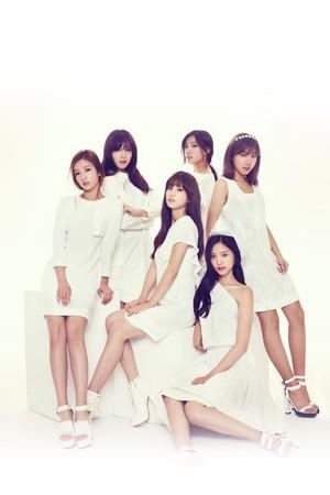 清純で可愛いアイドルを好む日本からもラブコール…K-POPグループ「A Pink」、活動舞台を海外へ